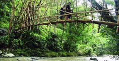 Baduy Bamboo bridge