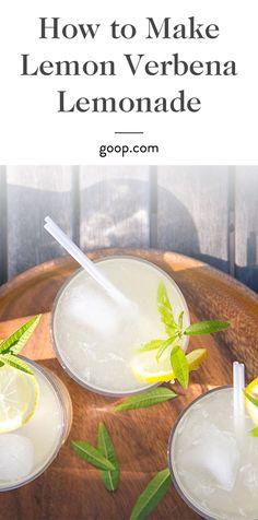 ... lemon juice and sparkling water lemon verbena lemonade 29 9 lemon