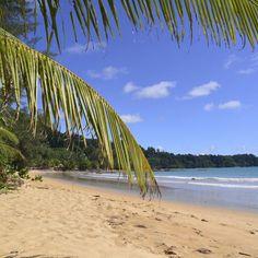 Du wolltest schon immer mal nach Thailand reisen und am herrlichen Strand von Khao Lak entspannen? Dann haben wir den …