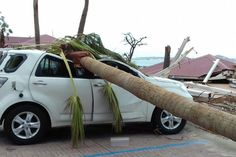 Hurricane Irma Response by France and the UK Gets Criticized in the Caribbean  A palm tree lays on a car after the passage of Hurricane Irma near the shore in Marigot on the island of St. Martin Sept. 9 2017. Amandine Ascensio / Associated Press  Skift Take: Stranded Dutch tourists at the airport in St. Maarten had to stand around and watch as American and Canadian travelers got relief flights out of the Irma-damaged islands. French British and Dutch authorities are getting criticized for…