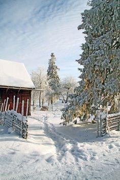 exploring ridge village in Åsens Norway