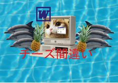 #microsoft #windows #word #computer #toast #cat #dolphin #japanese #pineapple https://www.instagram.com/d4xis/