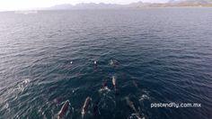 Exploring Baja episode 1 - Loreto Bay. Baja California Sur, Mexico.
