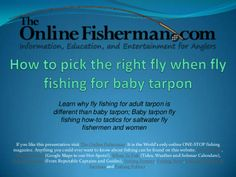 How to saltwater fly fish for baby tarpon by David Tartaglia via slideshare