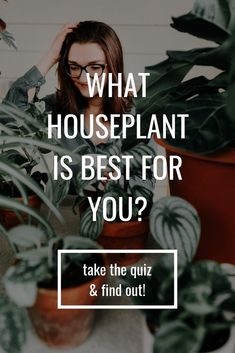 Finding the right houseplant for you and your home is the MOST important step! Take the quiz and find the best houseplant for you! (and learn how to keep it alive) Lawn And Garden, Garden Tools, Garden Ideas, Succulent Gardening, Indoor Gardening, Plants Are Friends, House Plant Care, Types Of Vegetables, Herbs Indoors