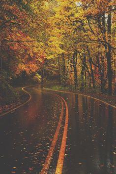 fall running scenery