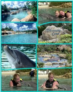 discovery cove!!! Grandchildren loved this! Each got to go on tenth Birthday!