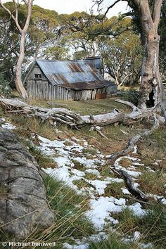 Another mountain hut for Molly and Nathaniel to shelter from the blizzard. This is actually Wallace Hut Falls Creek, Australia. Now used by hikers and cross country skiers for emergency shelter, it's not exactly the height of luxury. Abandoned Houses, Abandoned Places, Old Houses, Farm Houses, Australian Bush, Australian Sheds, Falls Creek, Victoria Australia, Old Farm