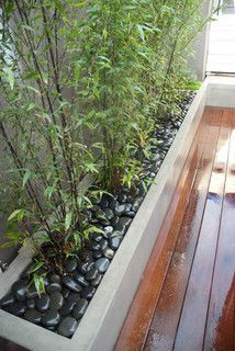 Raised concrete bamboo planter box with river rock. Modern landscape by Aloe Des Raised concrete bamboo planter box with river rock. Modern landscape by Aloe Des Modern Landscape Design, Modern Landscaping, Backyard Landscaping, Modern Patio, Black Rock Landscaping, Landscaping Ideas, Landscaping Software, Bamboo In Pots, Bamboo Planter