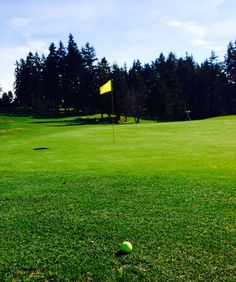 Beautiful day for Golf!