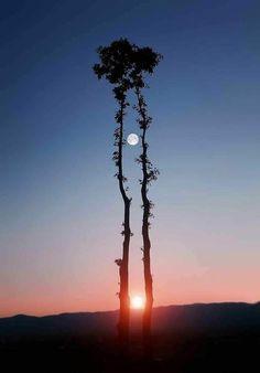 Pôr do Sol ou nascer? Não importa, apenas veja a perfeição da natureza.