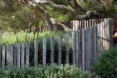 3 Brisk Cool Tips: Pool Fencing Ideas Nz Garden Fence Quilt.Wood Fence X Design. Front Yard Fence, Farm Fence, Pool Fence, Backyard Fences, Garden Fencing, Garden Pool, Horse Fence, Small Fence, Horizontal Fence