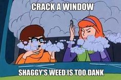 It's pretty funny too look back at Scooby-Doo and look for marijuana references. Lots of people agree that Shaggy smoked weed, and I'm sure when Shaggy Memes Humor, Funny Weed Memes, Stupid Memes, Weed Jokes, 420 Memes, Funny Humor, Funny Quotes, Scooby Doo Memes, Jokes