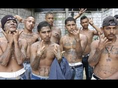 Der härteste Knast der Welt – Mexiko El Hongo Inmitten der Baja-California-Wüste erstreckt sich eine der sichersten Haftanstalten Mexikos: El Hongo. Was geht im Grenzgebiet Tijuanas vor sich, dass die städtischen Gefängnisse derart überfüllt sind? Hier, wo Drogenbosse und andere... - #Doku, #Knast, #Menschen, #N24  https://www.dokuhouse.de/der-haerteste-knast-der-welt-mexiko-el-hongo/