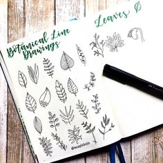 "My #calligrabestie @alex.movingfwd and I are both practicing our #botanicallinedrawing this month! I can't wait to incorporate some of these new doodles into my bullet journal pages! Right now I'm working on the ""leaves"" section of the book @botanicallinedrawing and I'm loving the variety. ☘️ thanks @thepigeonletters for creating such a unique and useful book! . . . . #bulletjournaladdicts #bulletjournalcommunity #bulletjournaladdict #bulletjournallove #bulletjournaljunkies #bull..."