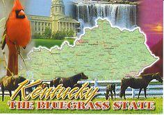 KENTUCKY RECIPES-Benedictine Spread, Stack Cake, Cream Candy, Hot Brown, Kentucky Bourbon Bundt Cake, Kentucky Derby Pie, Kentucky Burgoo, Kentucky Bourbon Balls.