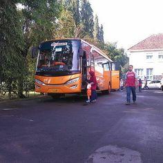 Bus Wisata Jogja Seat 50, Sewa Bus Jogja Harga Murah Telp 082243439356