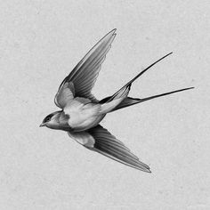 Tattos with Meaning – Meaningful tattoos Swallow Bird Tattoos, Tiny Bird Tattoos, Swallow Tattoo Design, Bird Drawings, Tattoo Drawings, Vogel Tattoo, Tattoo Designs, Sparrow Tattoo, Tatuagem Old School