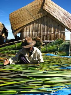 The Uros people live on floating islands in Lake Titicaca. Everything from the islands to the boats is made of totora reed, which grows abundantly in the lake. The man pictured is making a boat from it, which will last him a year.