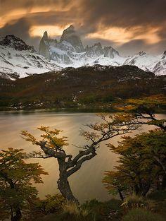✯ Autumn in Patagonia, Fitzroy Towers over Laguna Capri - Argentina