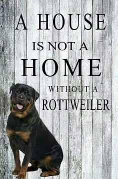 True........