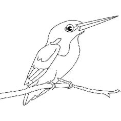 Dibujos de pájaros para colorear: Martín Pescador Bird Embroidery, Line Patterns, Kingfisher, Adult Coloring Pages, Animal Drawings, Bird Feeders, Zentangle, Watercolor Paintings, Needlework