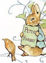 Peter Rabbit Drawings