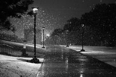 Snow is so peaceful....