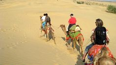Camel safaris in Rajasthan
