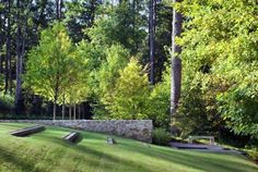 woodland rain garden terraces by Jeffrey Carbo