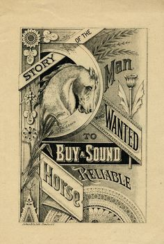 Story of the Man Who Wanted to Buy Sound Reliable Horse   Sheaff : ephemera