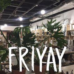 YAY for Friday! #friYAY