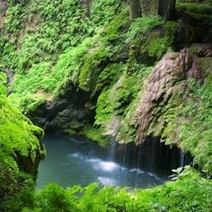10 Amazing Waterfalls Within Reach - WESTCAVE PRESERVE Less than an hour's drive from Austin, Tex. Take a guided hike down into a cool cave formation featuring lush, green ferns under a canopy of cypress trees. The short trail ends in an enchanting grotto where water cascades over a broken rock formation, a unique setting in the heart of the Texas Hill Country.  Best time to visit: Year-round, but open to the public only on weekends.