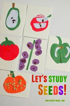 Super easy art and science activity to teach kids about seeds and fruit!