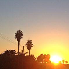chasing the sun Photo by @happymundane on Instagram