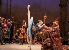 Alina Cojocaru Ballet News Reviews | English National Ballet's Le Corsaire | Ballet News | Straight from the stage - bringing you ballet insights