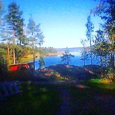 Sunny Sunday afternoon! #Bromarf #finland #sunshine #autumn #niceday #sunnysunday #nature #instalike