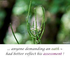 ... anyone demanding an #oath ~ had better reflect his #assessment !