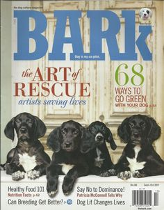 Bark dog magazine Art of rescue Going green Healthy food 101 Breeding Dominance Magazine Art, Magazine Layouts, Charity Volunteering, Pet Style, Food 101, Light Of Life, Animal Photography, Animal Rescue