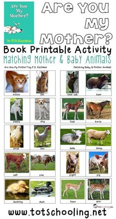 Free Mother & Baby Animals Matching Activity Free printable book activity for toddlers and preschoolers based on the book Are You My Mother? where the child matches 10 different baby & mother animal pairs. Great activity for Mother's Day! Preschool Science, Toddler Preschool, Preschool Classroom, Learning Activities, Preschool Activities, Preschool Farm, Kindergarten Learning, Preschool Books, Preschool Lessons