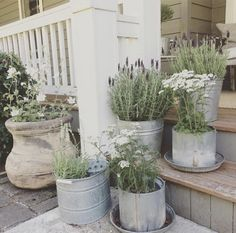 Farmhouse Landscaping, Farmhouse Garden, Country Farmhouse Decor, Front Yard Landscaping, Farmhouse Style, Country Living, Landscaping Ideas, Farmhouse Design, Modern Farmhouse