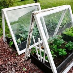 Best Vegetables To Grow In Raised Garden Patio Pergola, Outdoor Landscaping, Outdoor Gardens, Veg Garden, Garden Beds, Vegetable Gardening, Organic Gardening, Garden Crafts, Garden Projects