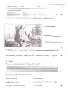TÉMAZÁRÓ FELMÉRÉS KÖRNYEZETISMERETBŐL: AZ ERDŐ - tanitoikincseim.lapunk.hu Worksheets, Homeschool, Lily, Teaching, Education, Fun, Google, Barbie, Science