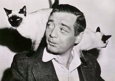 Peter Lorre and Siamese cats