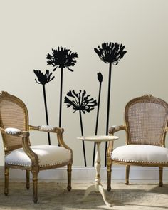 Black Agapanthus Wall Decal at AllPosters.com