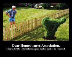 Message to homeowner: the bushes need to be trimmed. Message to the HOA...
