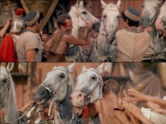 Ben-Hur thanking his white stallions, who are treated as friends by the Jewish charioteer. Ben-Hur 1959