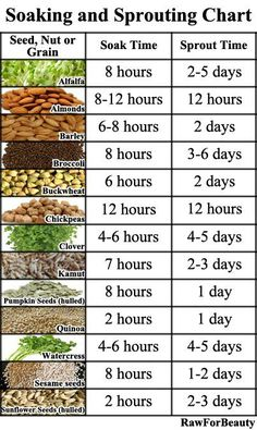 Soaking and Sprouting Chart | Healthy Natural