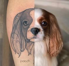 15 Most Beautiful Tattoo Ideas - Page 10 of 15 - Tattoo Designs Tattoos For Dog Lovers, Dog Tattoos, Animal Tattoos, Cute Tattoos, Beautiful Tattoos, Tatoo Dog, Dog Pawprint Tattoo, Dog Portrait Tattoo, Memorial Tattoos Small