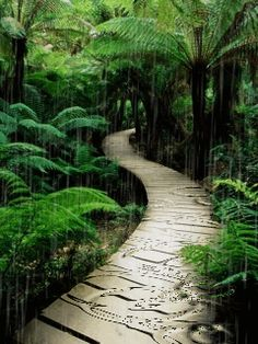 Download Animated 240x320 «Endless bridge» Cell Phone Wallpaper. Category: Nature